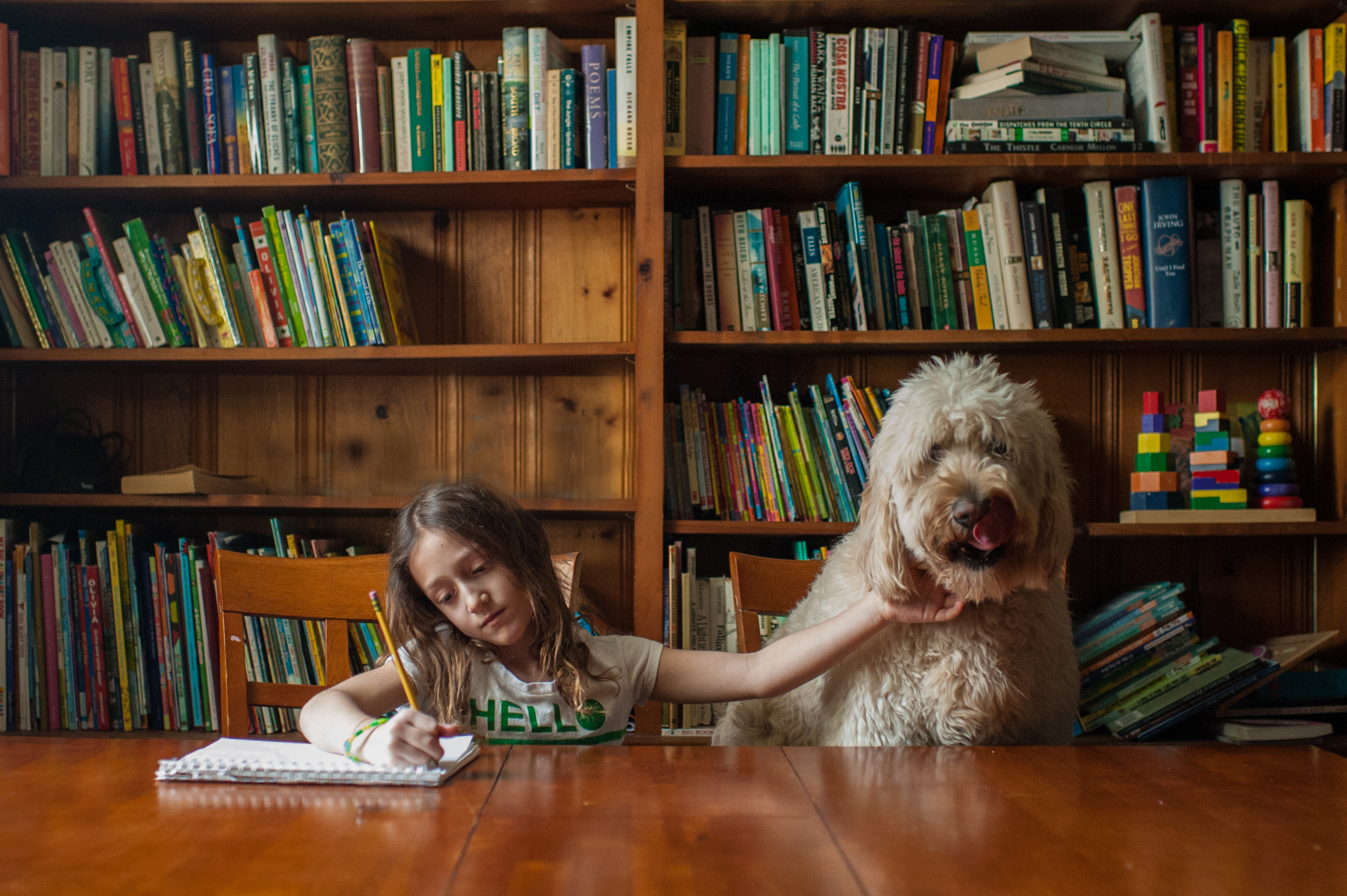 award winning portrait of girl with her dog. Erin Borzellino - portrait photographer in Westchester County, NY