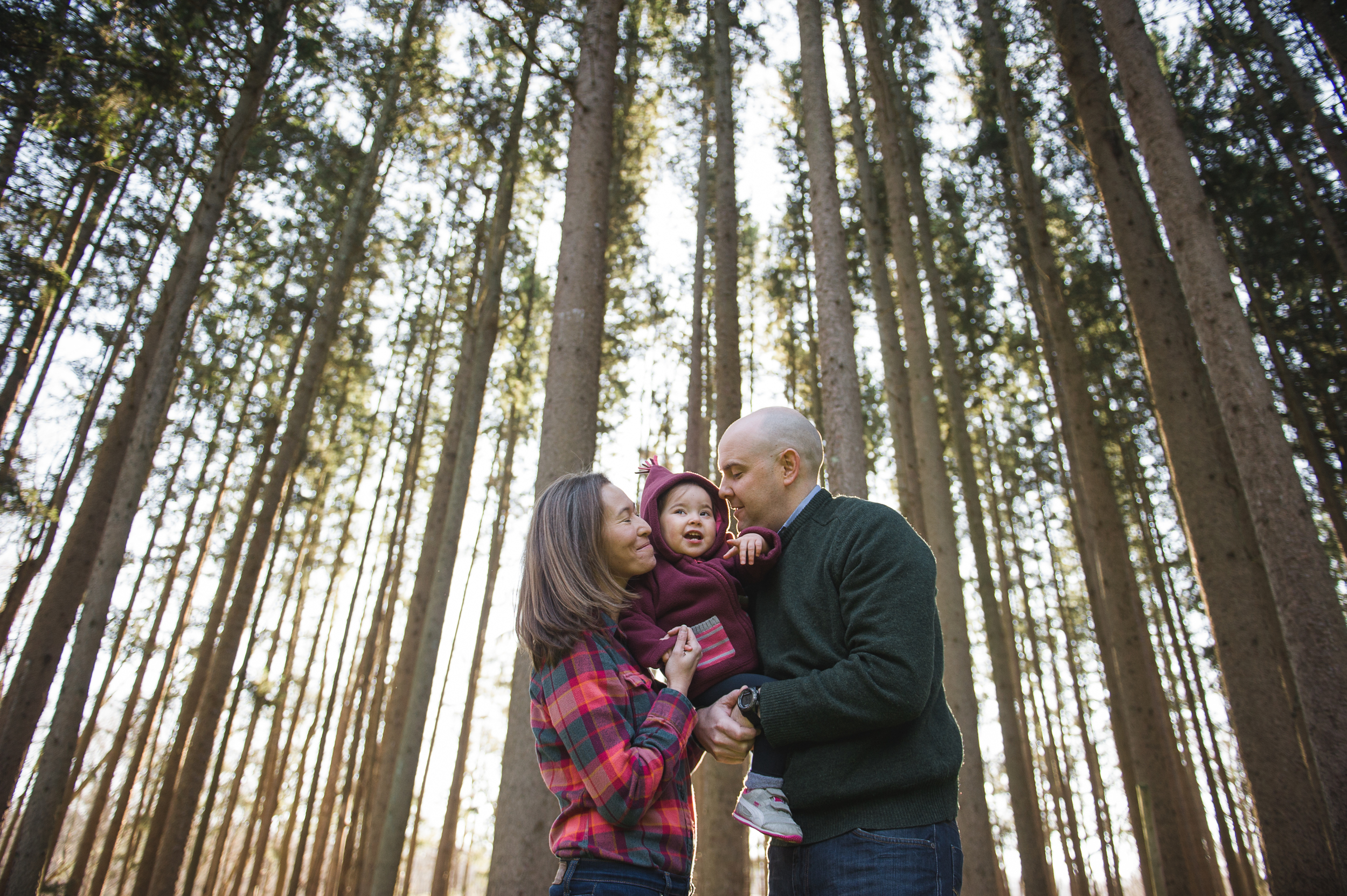 family portrait in the woods by Erin Borzellino. Armonk, NY portrait photographer